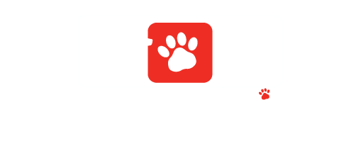 American Veterinary Clinic